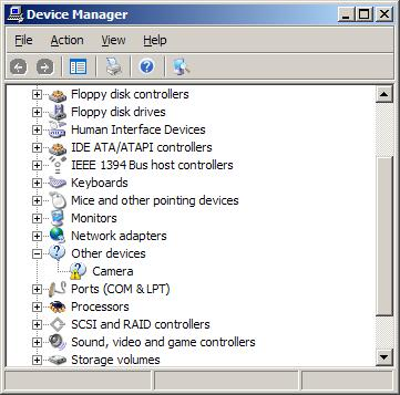 Other devices in Windows device manager